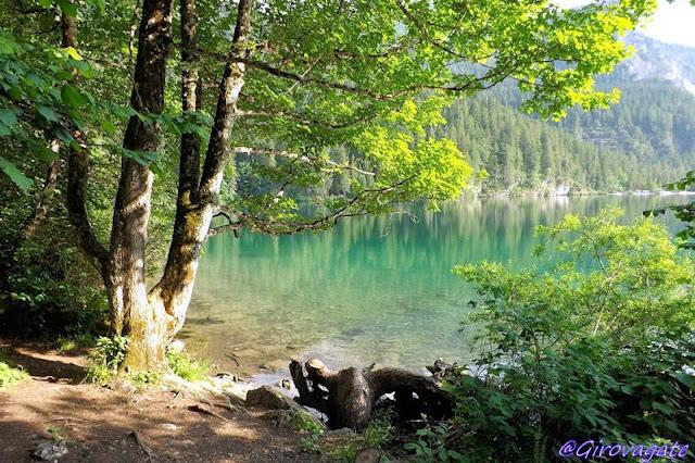lago tovel trentino