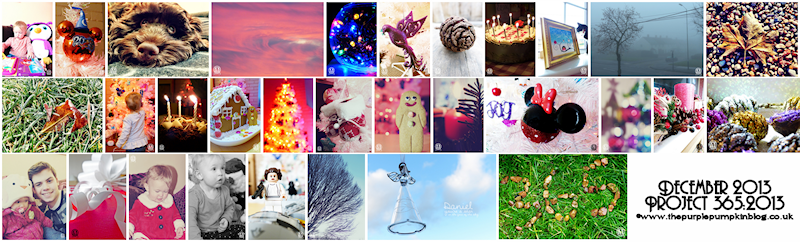Project 365:2013 – December Round-Up