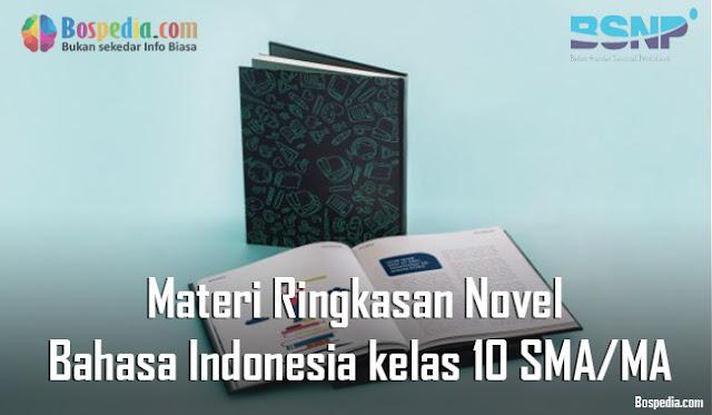 Materi Ringkasan Novel Mapel Bahasa Indonesia kelas 10 SMA/MA