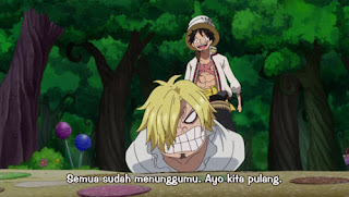 Download One Piece Episode 795 Subtitle Indonesia