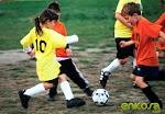 A to Z Peraturan Sepak Bola Profesional Lengkap Sesuai Standar FIFA Badan Sepakbola Dunia