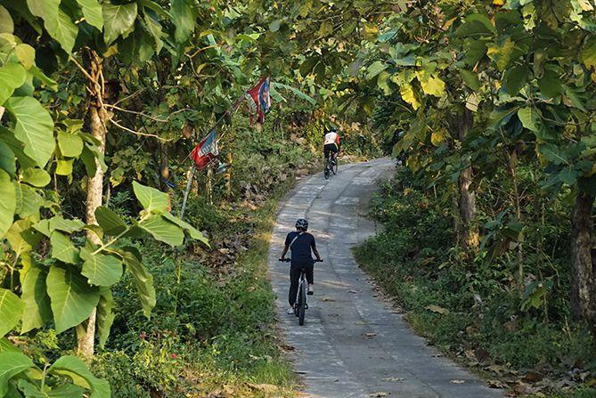 Tanjakan menuju Gunung Wangi di antara pepohonan Jati