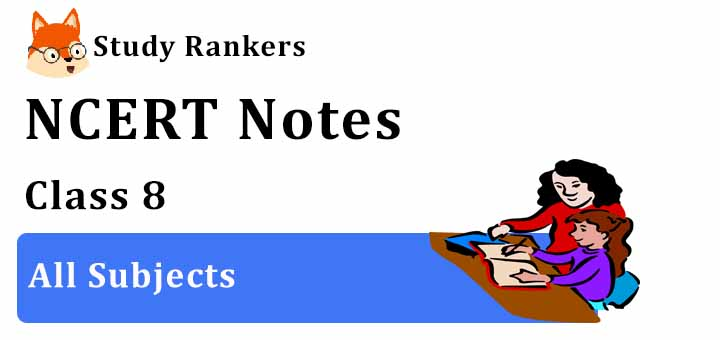 NCERT Revision Notes for Class 8