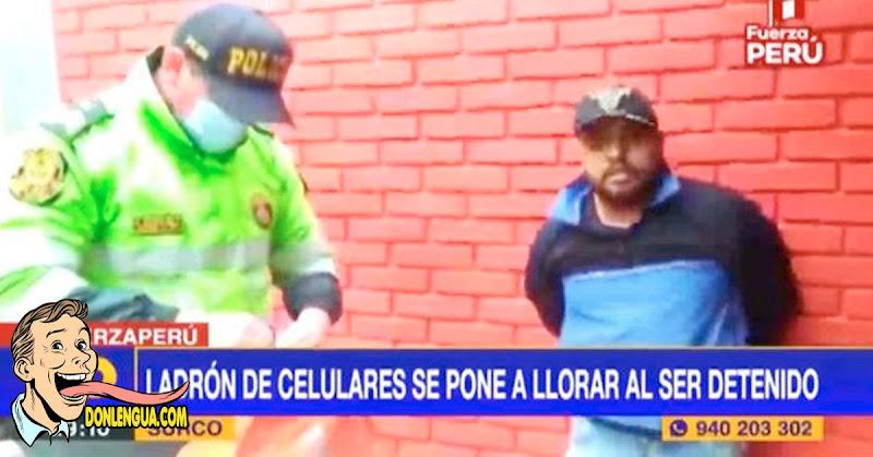 Delincuente venezolano se puso a llorar tras ser capturado en Perú