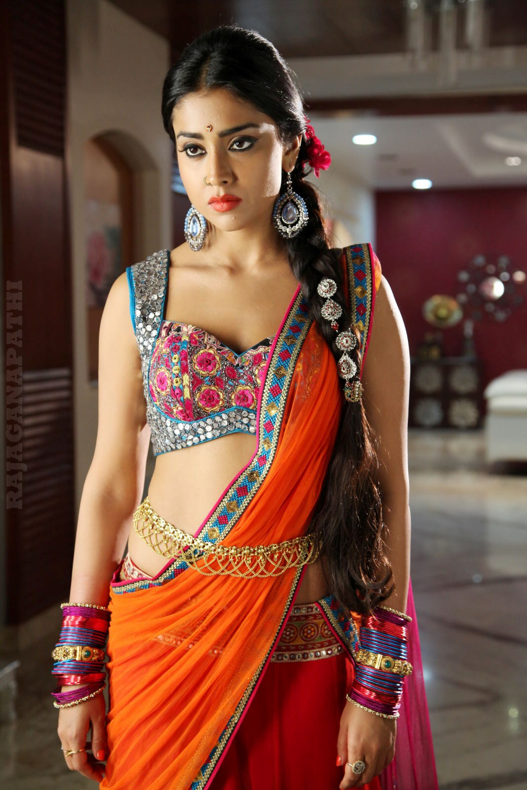Actress Shriya Saran In Saree New Hot Hq Photos Collection -6191