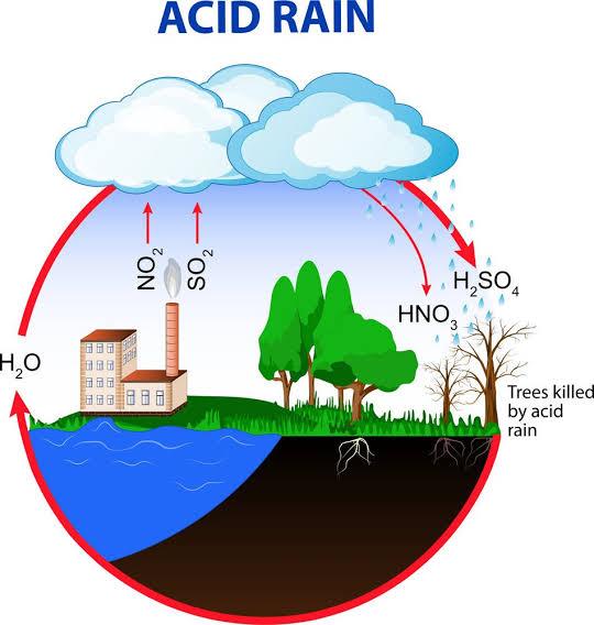 Acid Rain!