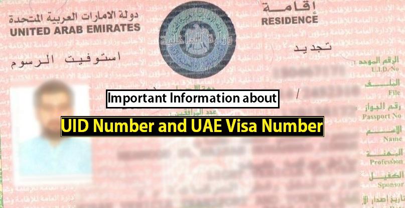 UID Number, UAE Visa Number, Unified number, How to found visa number on uae visa