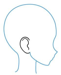 Penempatan telinga anime di kepala