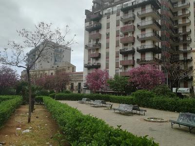 Uno spazio verde tra i palazzi potenzialmente gradevole ridotto a discarica