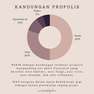 Mengenal Propolis, Lem Lebah Kaya Manfaat