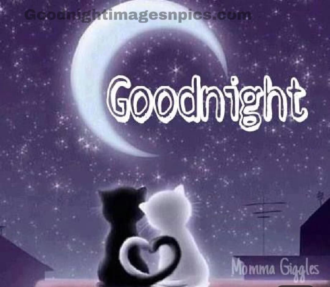 Beautifull Good Night Pics