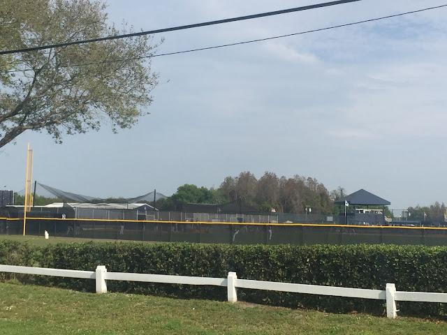 Tampa, Florida - New York Yankees practice