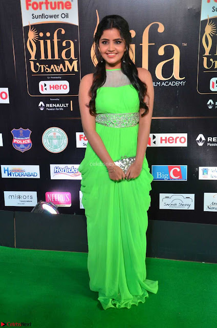 Anupama Parameshwaran cute beauty in Neon Green gown at IIFA Utsavam Awards 2017  Day 2  HD Exclusive 01.JPG