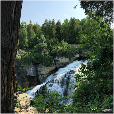July 10, 2019 Hiking the Inglis Falls portion of the Bruce Trail