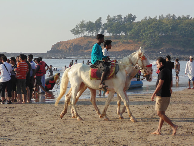Horse riding at Kashid Beach