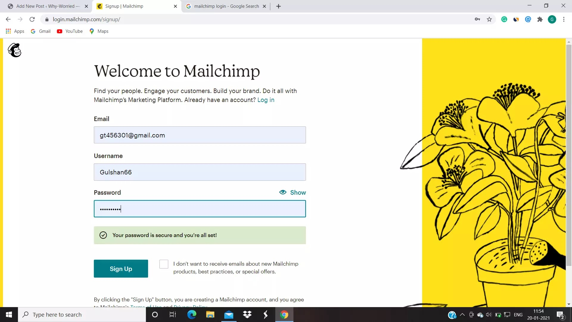 email images of mail chimp dashboard