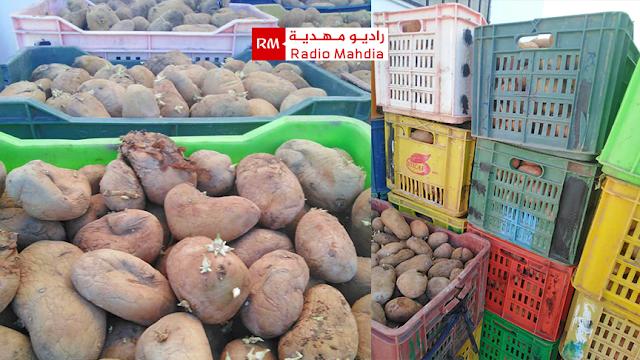 المهدية : حجز وإتلاف أكثر من 1500 كلغ من البطاطا الفاسدة