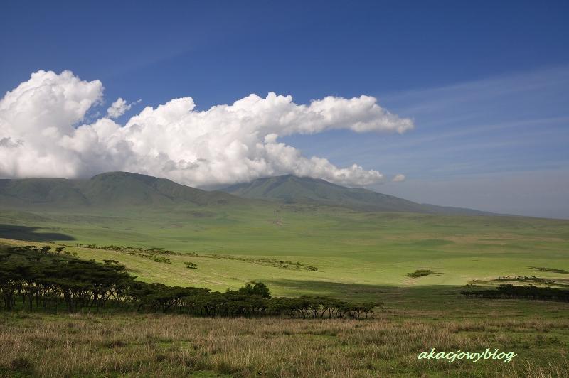 Ngorongoro - nie może być piękniej!
