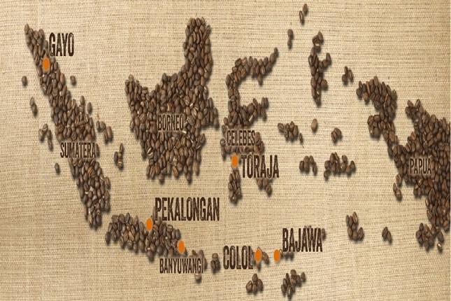 Indonesian Coffee History