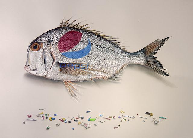 Dessin d'un Porgy du Pacifique avec en dessous des fragments dessinés de plastiquescolorés