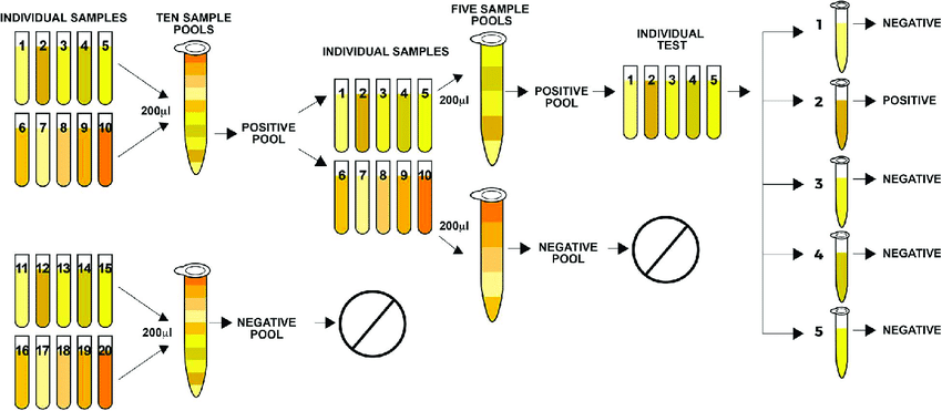 Horemheb-Rubio et al (September 2017). Figure 1. Diagram of pooling method for serum samples from blood donors