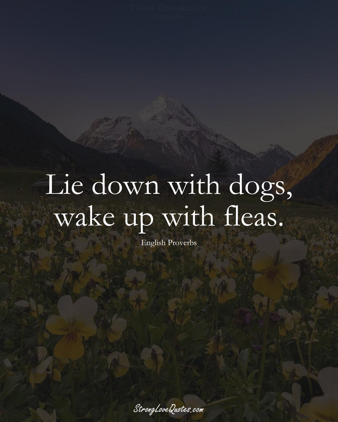 Lie down with dogs, wake up with fleas. (English Sayings);  #EuropeanSayings