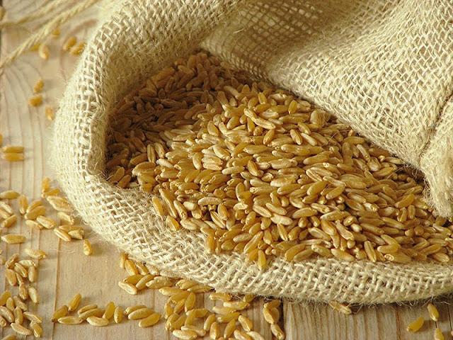 recette avec du blé khorasan kamut