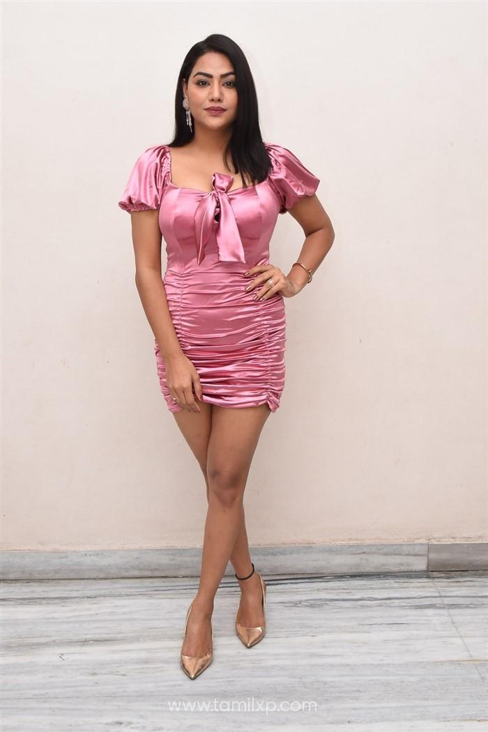 Telugu Actress Tanya Desai Stills