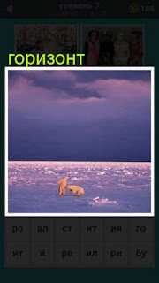 до самого горизонта снег и два медведя среди него 667 слов 7 уровень