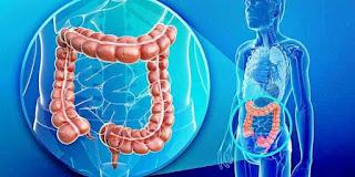 Perlunya Detoksifikasi, Penyebab, Pencegahan, dan Perawatan