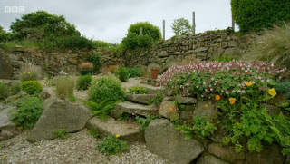 Will Young's garden