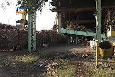 Pabrik Gula Resahkan Praktek Jual Beli Tebu Diluar Pabrik