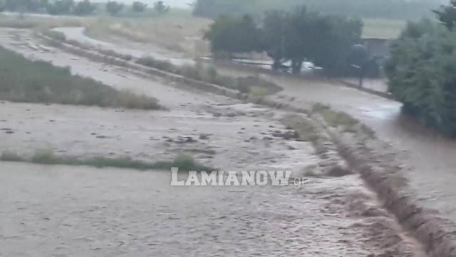 ianos-fthiotida-maxes-se-xoria-gia-na-sothoun-zoes-kai-periousies-pics-video