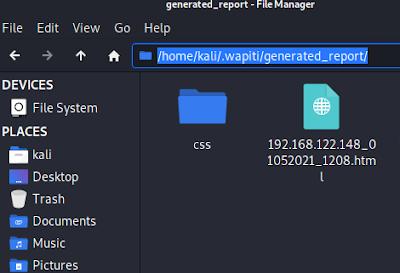 wapiti generated report