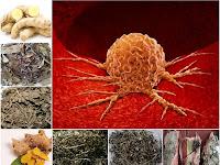 Membuat Ramuan Herbal untuk Obati Tumor dari Prof. H.M. Hembing Wijayakusuma