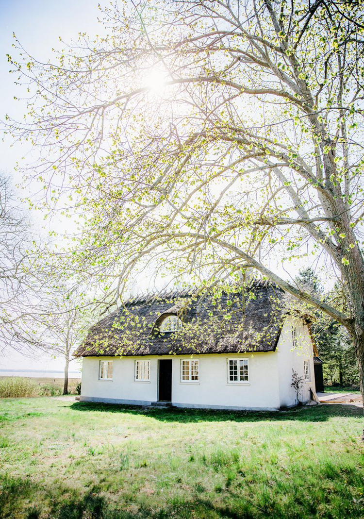 Before & After: A Century-Old Danish Thatched Cottage Is Given a Revamp!