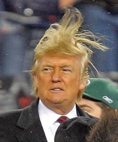 Donald Trump windy