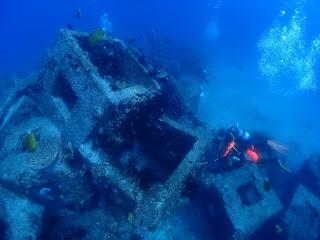 2021年7月30日の柏島ダイビング
