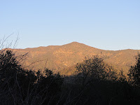View east across San Gabriel Canyon toward Glendora Mountain