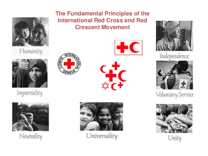 functions of red cross society pdf