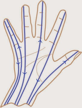 6 main meridians in the hands, energy lines in the hands that can be stimulated with reflexology