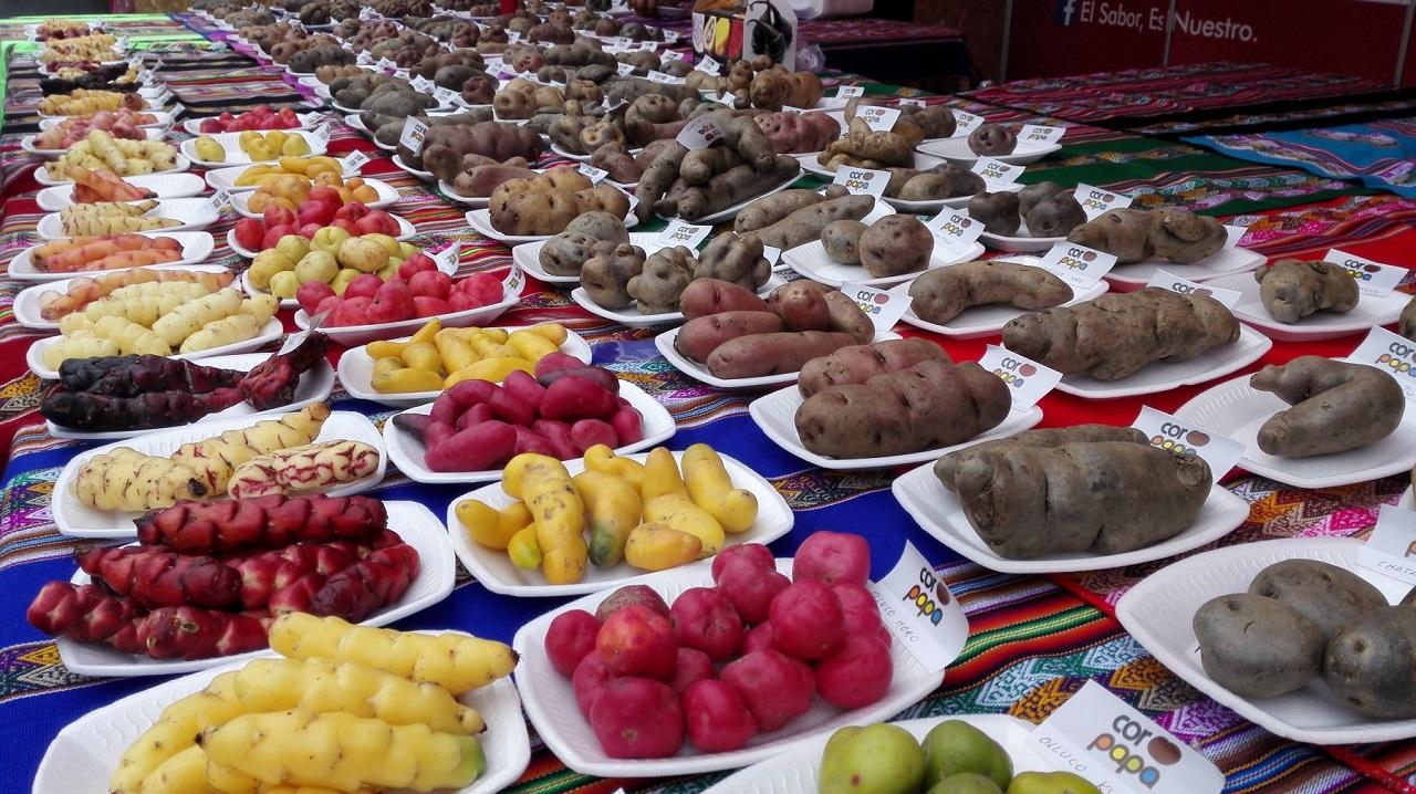 Vegetales nativos y de origen extranjero