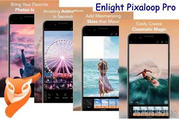 Enlight Pixaloop Pro Mod