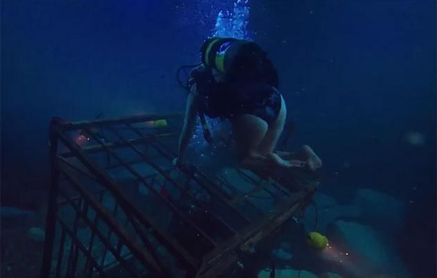 47 Meters Down, Movie Review, Great White Shark, Mandy Moore, horror film, rawlins GLAM, byrawlins
