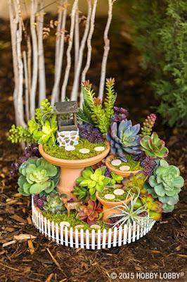 giardino in miniatura con succulente