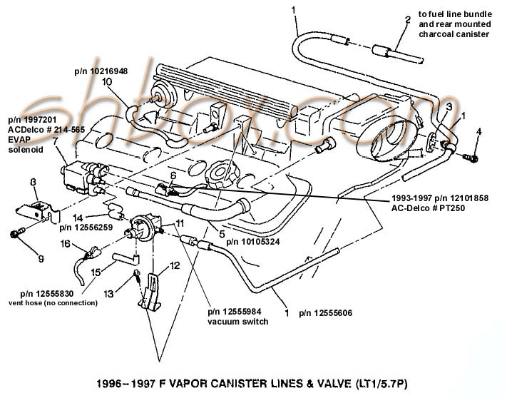 Evap on 1997 Toyota Ta A Wiring Diagram