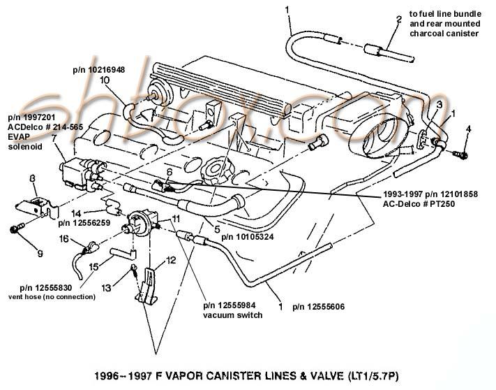 Evap on 2004 Chevy Impala 3 4 Engine Diagram