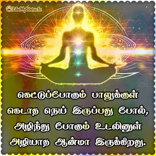 வாழ்க்கை உண்மை ஸ்டேஷன்