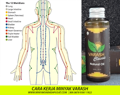 Terapi Minyak Varash untuk Jantung