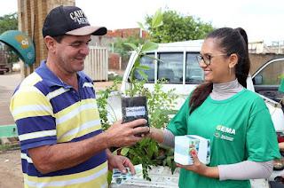 http://vnoticia.com.br/noticia/2814-meio-ambiente-distribui-mudas-de-arvores-frutiferas-no-portal-de-sfi